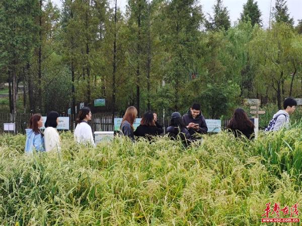 行走的思政课——湖南都市职业学院开展情境教学活动